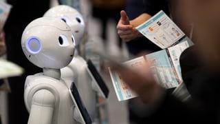 «Einstein» bei den Robotern