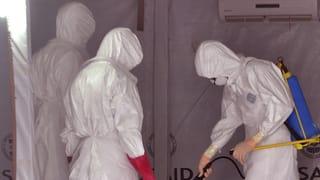 Zwei neue Ebola-Fälle bestätigt
