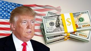 So sieht Trumps Steuerreform aus