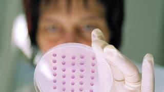 Interview mit Heidi Diggelmann, die die Schweizer Debatte zur Stammzellforschung prägte.