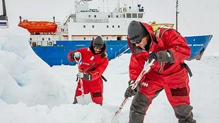 Antarktis-Expedition: Helikopter-Rettung wird vorbereitet