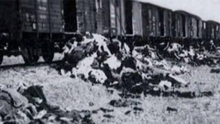 Holocaust-Bilder: Historiker verteidigt späte Publikation