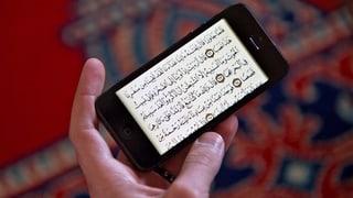 Private Hacker attackieren das Kalifat