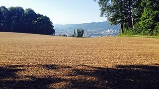 Grund und Boden – ein kostbares Gut