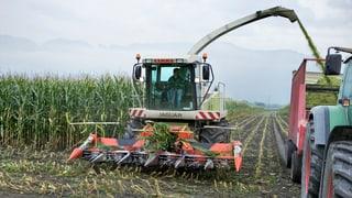 Immer weniger, aber grössere Bauernhöfe im Aargau