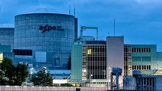 Kein Treffen zwischen Axpo und Greenpeace zu Beznau