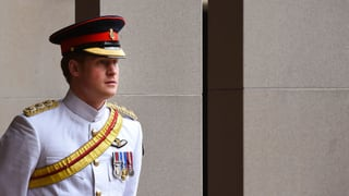 Prinz Harry ganz einsam: Er wünscht sich Frau und Kinder