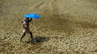 Bis 600 Millionen Dollar für Klimaschutz in Entwicklungsländern