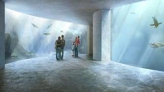Zoo-Ozeanium spaltet Basel