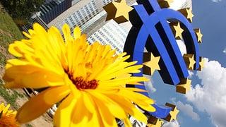 EZB lässt Leitzins bei rekordniedrigen 0,5%