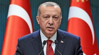 Wahlen in der Türkei sollen ein Jahr vorgezogen werden