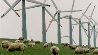 Baselbieter Landrat stellt Weichen für Windparks