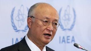 UNO-Behörde warnt vor Atom-Terror