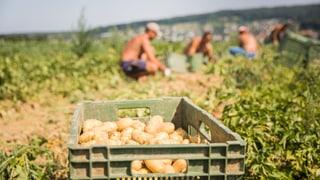 Cumbat cunter Iniziativa per la suveranitad alimentara è lantschà