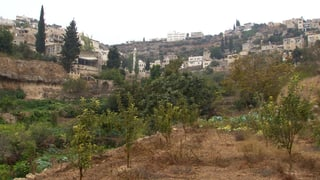 Video «Mauer oder Kultur – Israels Sperranlage in Kulturerbe-Landschaft» abspielen