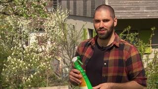 Umwelt-Risiko: Tonnenweise Pestizide in Privatgärten