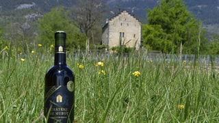 Walliser Wein in der Kritik