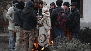 Syrische Flüchtlinge sollen in der Türkei arbeiten können