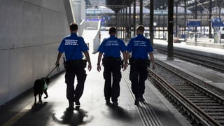 Kriminaltouristen gehen immer brutaler vor