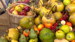 Gesunde Ernährung, gesunder Geist