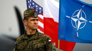 Wegen Ukraine-Krise: Baltische Staaten rufen Nato auf den Plan