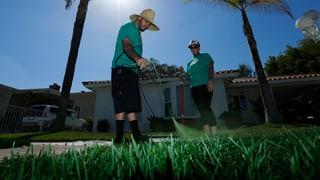 Klimawandel legt Kalifornien trocken