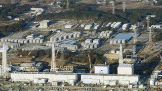 Fukushima: Japans Energie-Monopolisten geht's an die Privilegien