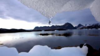 «Der Klimawandel schreitet voran»