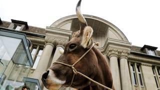 Parlament federal refusa iniziativa vatgas cun cornas