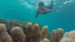 Video «Wasserwelten – Folge 1» abspielen