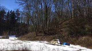 Regierung schlägt Variante für Sanierung der Deponie La Pila vor (Artikel enthält Audio)