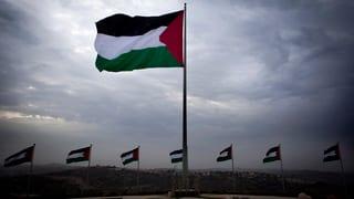 Anerkennung Palästinas: Israels Intellektuelle hoffen auf Europa