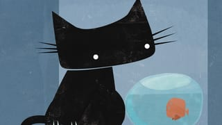 TV-Tipp des Tages: «Best of Swiss Animation 2015»