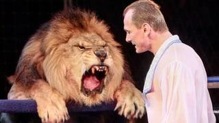 Sind Löwen wirklich mutig?
