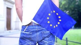 «Die EU sollte schweizerischer werden»