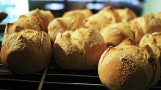 Unser täglich Brot ist mitten im Wandel