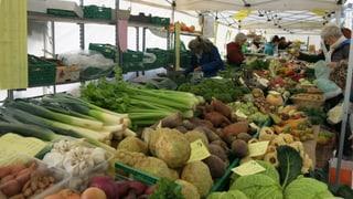 Milde Winter-Temperaturen: Für Gemüse-Bauern ein Stress