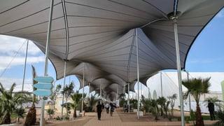 Hohe Erwartungen an Klimakonferenz von Marrakesch