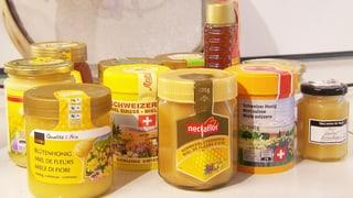 Plastik im Honig: Test zeigt Verschmutzung im Naturprodukt