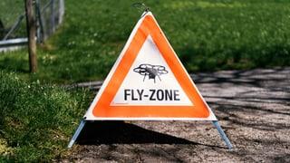 Drohnenverkehr soll schweizweite Regelung erhalten