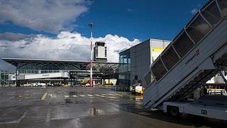 Elsässer Politiker machen sich für den Basler Flughafen stark