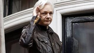 Julian Assange fa naufragi cun ses plant