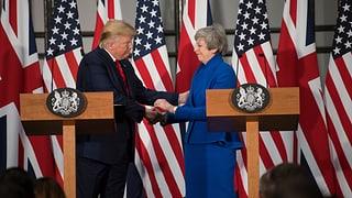 Trump bietet Grossbritannien Freihandelsabkommen an