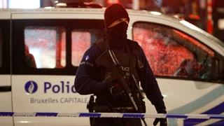 16 Festnahmen bei mehreren Razzien in Belgien