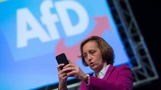 «Franz-Josef Strauss hätte die AfD gegründet»