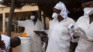 Ebola: BAG warnt Westafrikaner in der Schweiz