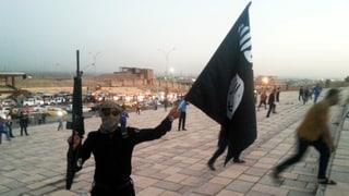 Fehlendes IS-Verbot in der Kritik