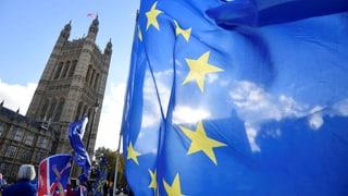 Wer will was im Brexit-Streit?