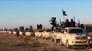 Verbot von IS und Al-Kaida rückt näher