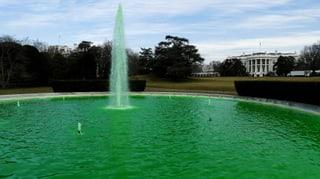 Die Welt sieht grün